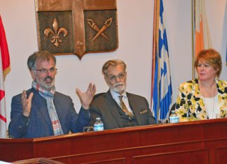 'This is something that is going to diminish our political clout,' says Hellenic Community of Greater Montreal president