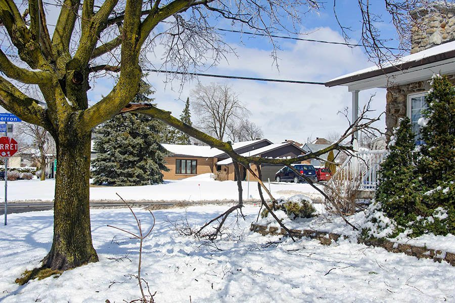 Laval copes with 'Ice Storm 2019'