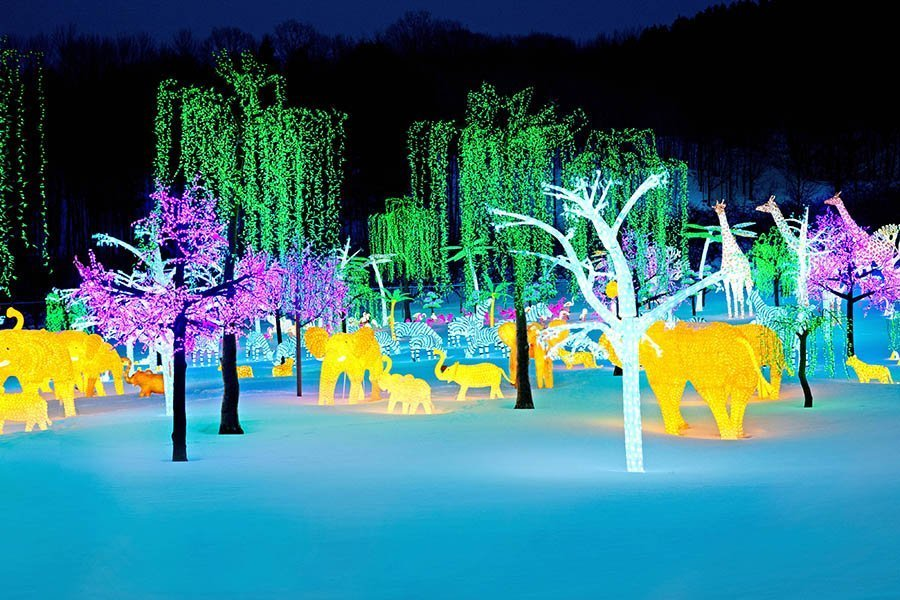 'Illumi' light show coming to Laval in time for Christmas