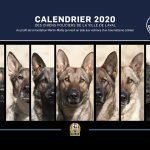 LPD's 2020 'Canine Calendar' now on sale