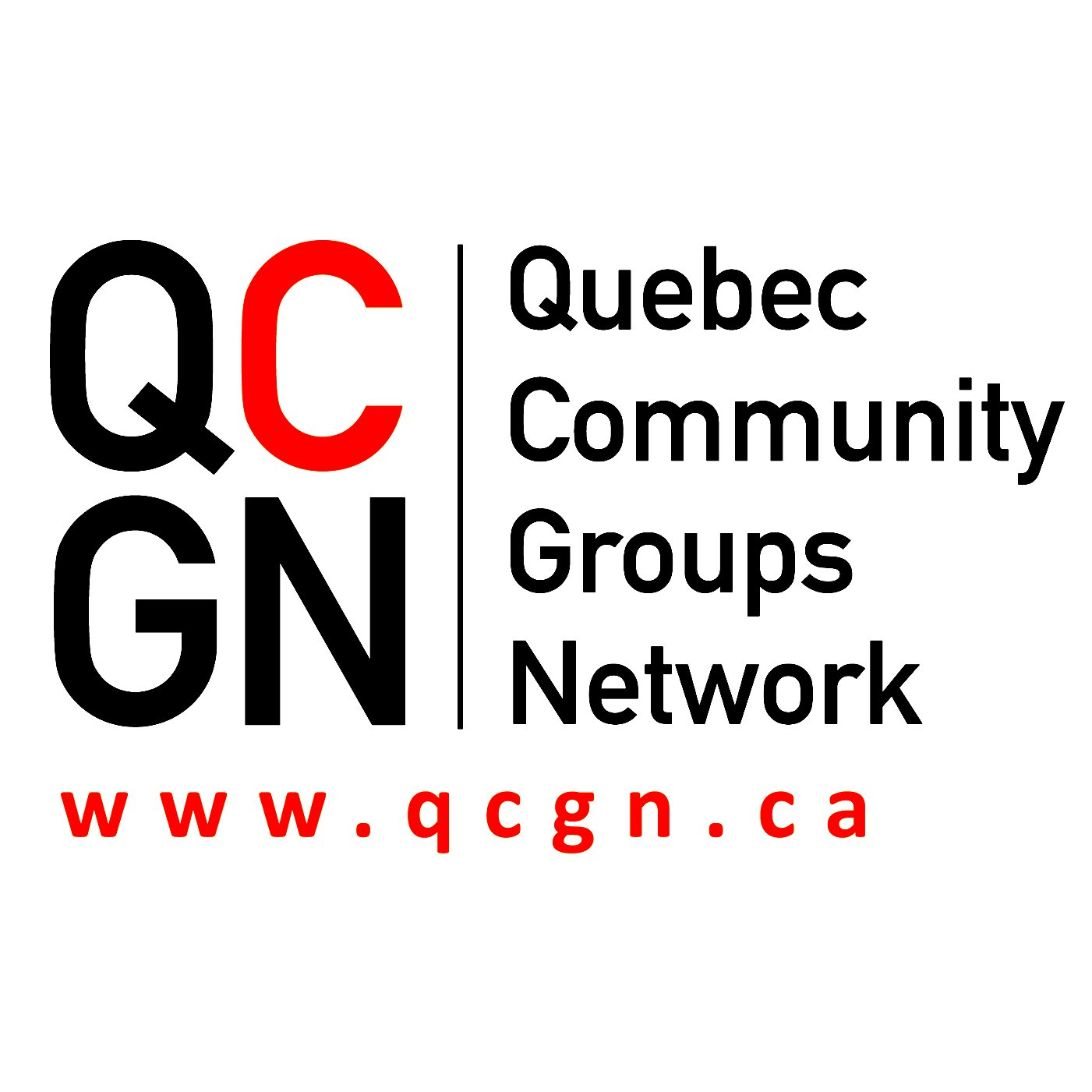 Bill 96 will set off a constitutional crisis, language rights lawyer tells QCGN